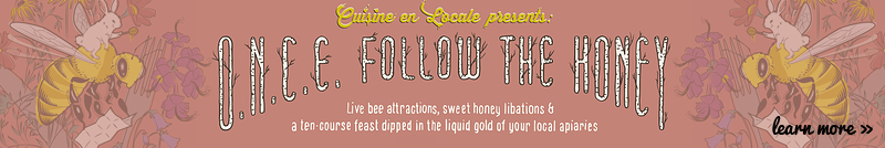 Follow the Honey Banner
